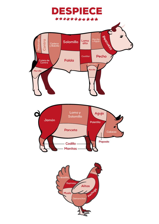 Despiece_carne